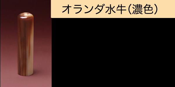 オランダ水牛(濃色)